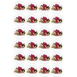 Kurabiye ve Cupcake Resmi 4x4 cm Ebat 24 lü Angrybirds